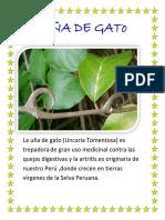 La-UÑA-DE-GATo