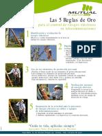 las_5_reglas_de_oro-control_del_riesgo_electrico.pdf