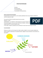 h.s.b. Photosynthesis