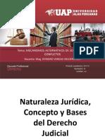 02 Naturaleza Jurídica Del Der Judicial (1)