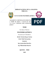 Hivelli_Tesis_Titulo_2013.pdf