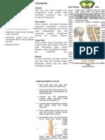 Leaflet Spondilosis Servikal