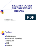Acute Kidney Injury - Chronic Kidney Desease
