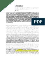 EXPLORACIÓN DEL SUELO.docx
