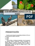 ecorregiones-130711000254-phpapp01