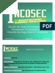 Estudio sobre Convivencia y Seguridad Ciudadana de INCOSEC