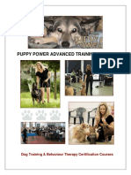Puppy Power Advanced Training Manual