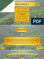 Sosiologi Pertanian - Kelompok Sosial