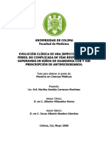 Martha_Imelda_Carranza_Martinez.pdf