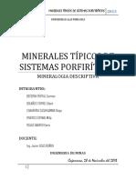 309908121-Trabajo-Final-Porfidos.docx