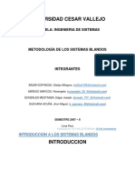 MSB Universidad Cesar Vallejo