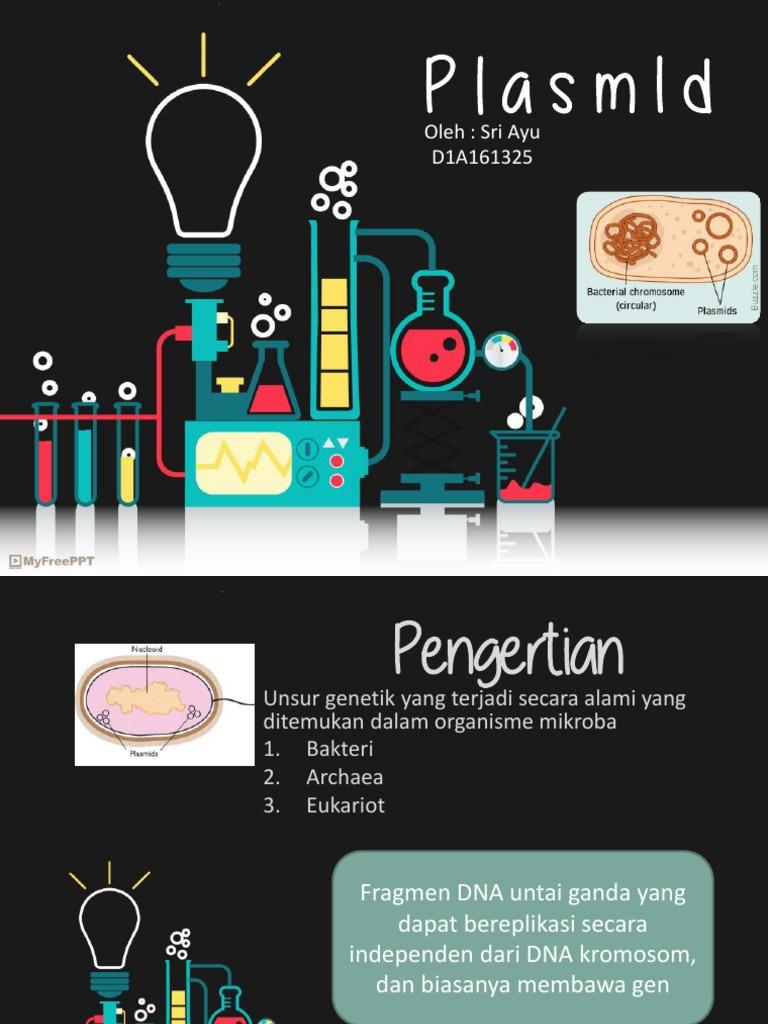 Plasmida ccuart Images