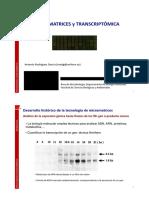 Micromatrices_2dpp
