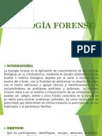 BIOLOGÍA FORENSE - DIAPOSITIVAS (1).pptx