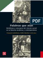 Palabras_que_atan._Metaforas_y_conceptos.pdf