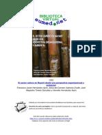 El Sector Cañero de Nayarit Desde Una Perspectiva Organizacional y Ambiental MB