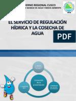 servicio de regulacion hidrica y cosecha de agua.pdf