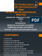 Expo  Deteccion de Brotes