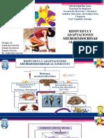 respuestas neuroendocrinas al ejercicio