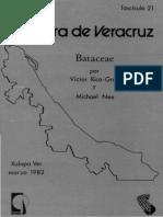 Flora de Veracruz Bataceae
