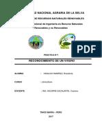 SILVICULTURA 1.docx