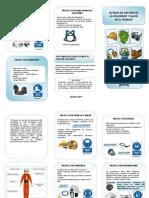 EPPs.docx