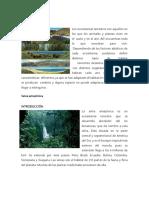 Ecosistema-Terrestre