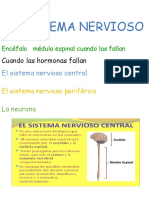 EL SISTEMA NERVIOSO.odt