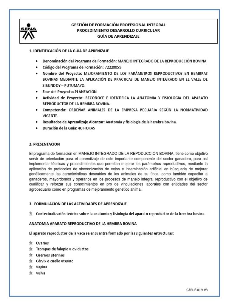 Excepcional Aprendizaje Basado En Proyectos Anatomía Y Fisiología ...