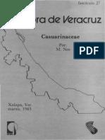 Flora de Veracruz Casuarinaceae