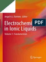 Electrochemistry in Ionic Liquids Vol 1