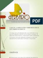 Guía Del Herbario. Universidad Rafael Landivar