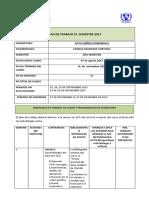 Plan de Trabajo - Acto Juridico Remedial. Prof Camilo Arancibia h. 2017