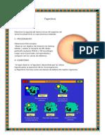 Fagocitosis, Rhizobium, Penicillium