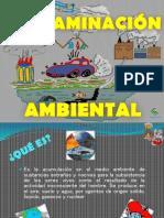 Trabajo de Biologia Contaminacion Ambiental