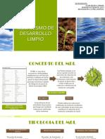 MECANISMOS DE DESARROLLO LIMPIO-1.pdf