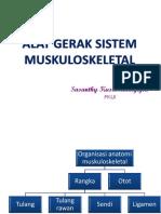ANATOMI SISTEM MUSKULOSKELETAL 2013-UKI(2).pptx