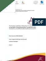 Radoi Mariana.pdf