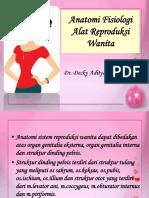 Anatomi Fisiologi Sistem Reproduksi Wanita