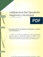 Perspectiva Del Desarrollo Regional y Municipal