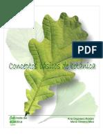 pub37CONCEPTOS BASICOS.pdf