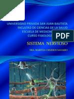 Sistema Nervioso Reflejos2017