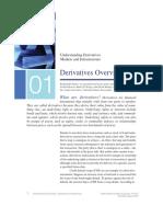 understanding-derivatives-chapter-1-derivatives-overview-pdf.pdf