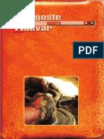 Revista Dragoste pentru Adevăr - Nr. 14/2007