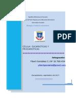 Biología y Conducta Laboratorio _Actividad Practica _1_ Celula Eucarioticas y Procarioticas