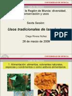 Usos Tradicionales Plantas