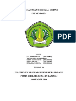 HEMOROID_2A.doc