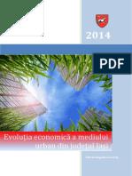 IASI STUDIU URBAN_feb2014.pdf