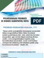 KELOMPOK 7 PELAKSANAAN PROMKES DI DINKES KABUPATEN.pptx