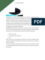ferrofluido